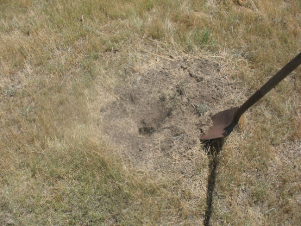 Picture of loosening dirt around hole.