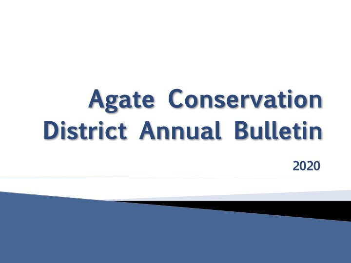 PDF version of Annual Bulletin Presentation